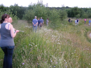 The group looking westwards across the wildflower banks of the balancing pond